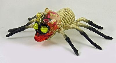 The_skullo_arachnid-plaseebo_bob_conge-arachnid-trampt-275647m