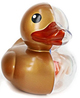 Rubber Ducky Anatomy - Gold