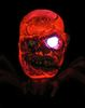 The_youzha_arachnid-plaseebo_bob_conge-arachnid-trampt-278757t