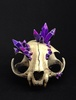 Persian Cat Skull with Amethyst Clusters