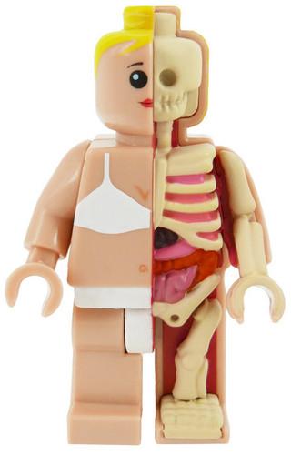 Micro_schematic_og_anatomic_-_femina-jason_freeny-anatomic-mighty_jaxx-trampt-279206m