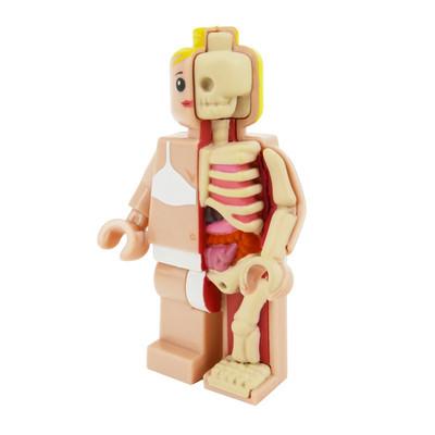 Micro_schematic_og_anatomic_-_femina-jason_freeny-anatomic-mighty_jaxx-trampt-279207m