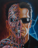 Arnie Meltdown