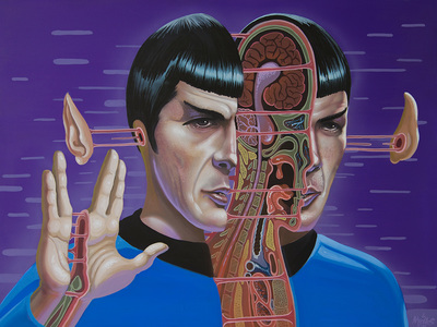 Dissection_of_spock-nychos-acrylic-trampt-281740m