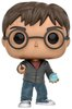 Harry_potter_-_harry_potter_with_prophecy-j_k_rowling-pop_vinyl-funko-trampt-284238t