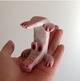 Albino Topsy Turvy Croc