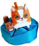 BoxCat Dog