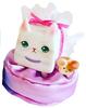 BoxCat Cat
