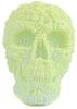 Lepreskar Skull