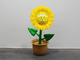 Sun_flower_3_eyed_sponge-ron_english-sunflower-made_by_monsters-trampt-287759t