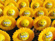 Sun_flower_3_eyed_sponge-ron_english-sunflower-made_by_monsters-trampt-287760t
