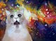 Space Tripping Cat