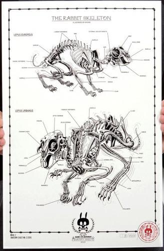 The_rabbit_skeleton_no02-nychos-1-color_screen_print_on_300_gm_munken_pure_paper-trampt-289447m