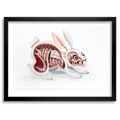Lepus_pellis_os_omentum-nychos-archival_pigment_print_on_310gsm_fine_art_paper-trampt-290298m