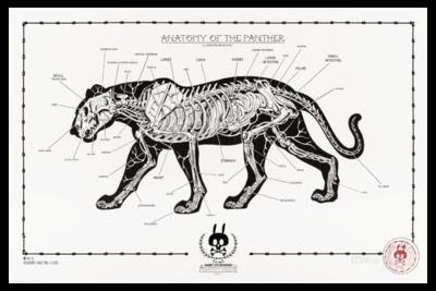 Anatomy_of_the_panther_no13-nychos-screenprint-trampt-290539m