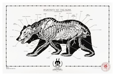 Anatomy_of_the_bear_no14-nychos-screenprint-trampt-290540m