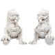 "XXRay Plus: 8"" Foo Dogs (Ivory Set)"