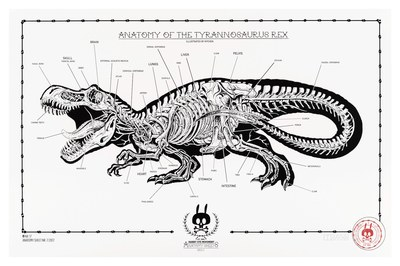 Anatomy_of_the_tyrrannosaurus_rex-nychos-1-color_screen_print_on_300_gm_munken_pure_paper-trampt-291131m