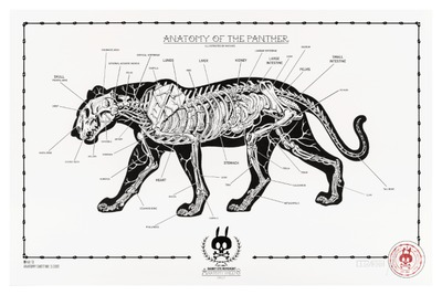 Anatomy_of_the_panther_-_no13-nychos-screenprint-trampt-291133m