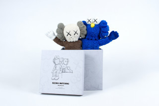 Seeingwatching_plush-kaws-companion-trampt-292830m