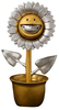 Gold & Silver Shocking Sunflower (Silver Grin)
