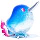 Silver Glitter Blue Kewii