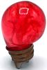 Red BLB-SPAWN
