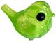 BigAppleGreen Magpie Robin (FPF '19)