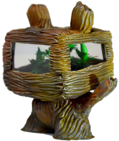 Brown_nugg_grows_wooden-ian_ziobrowski-dunny-trampt-305451m