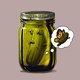 Pickle Metamorphosis Dreams