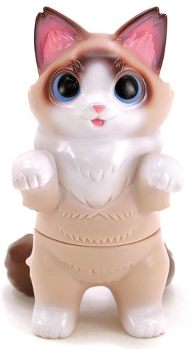 Ragdoll_fluffy_negora-konatsu_koizumi-fluffy_negora-konatsuya-trampt-306201m