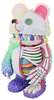 Rainbow Anatomical Muckey