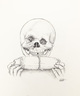 Alfred E. Newman Skull