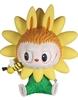 Hellanthus Sun Flower