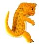 Orange_ligt-toshihiko_ito_painter-net-ligt-self-produced-trampt-325339t