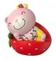 Strawberry Teddy