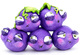 The Grapescapists