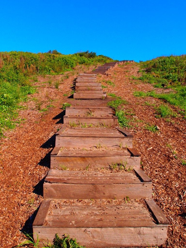 Killalea Beach Steps