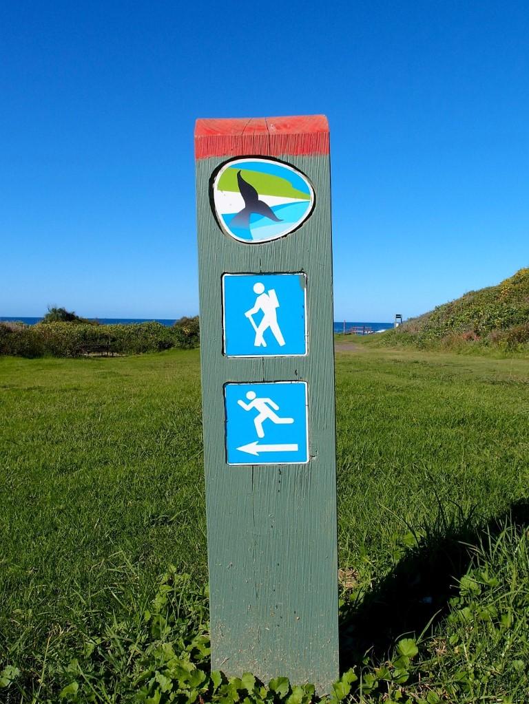 Killalea Beach Activities