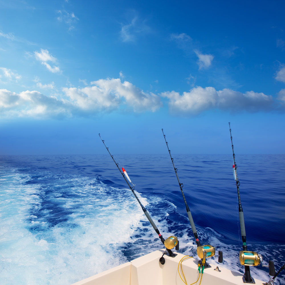 Deep Sea Kiama Fishing Charters