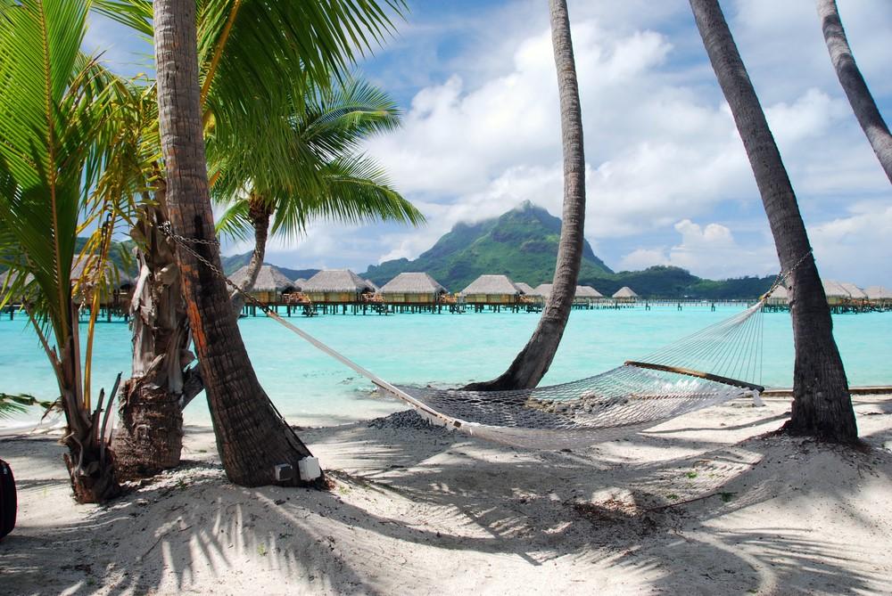 Lay on the hammocks