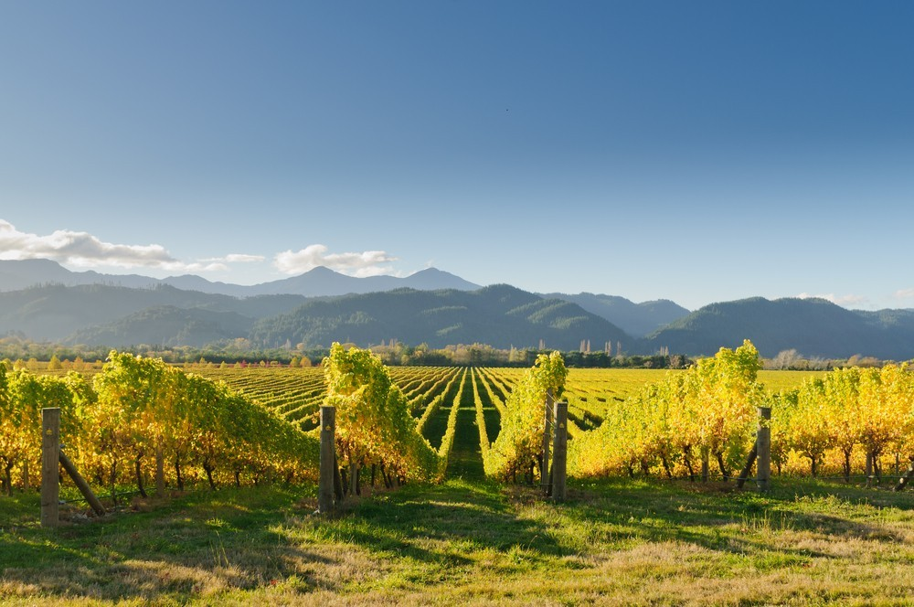 Best Place to Live in New Zealand - Marlborough