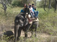 Jim Corbett