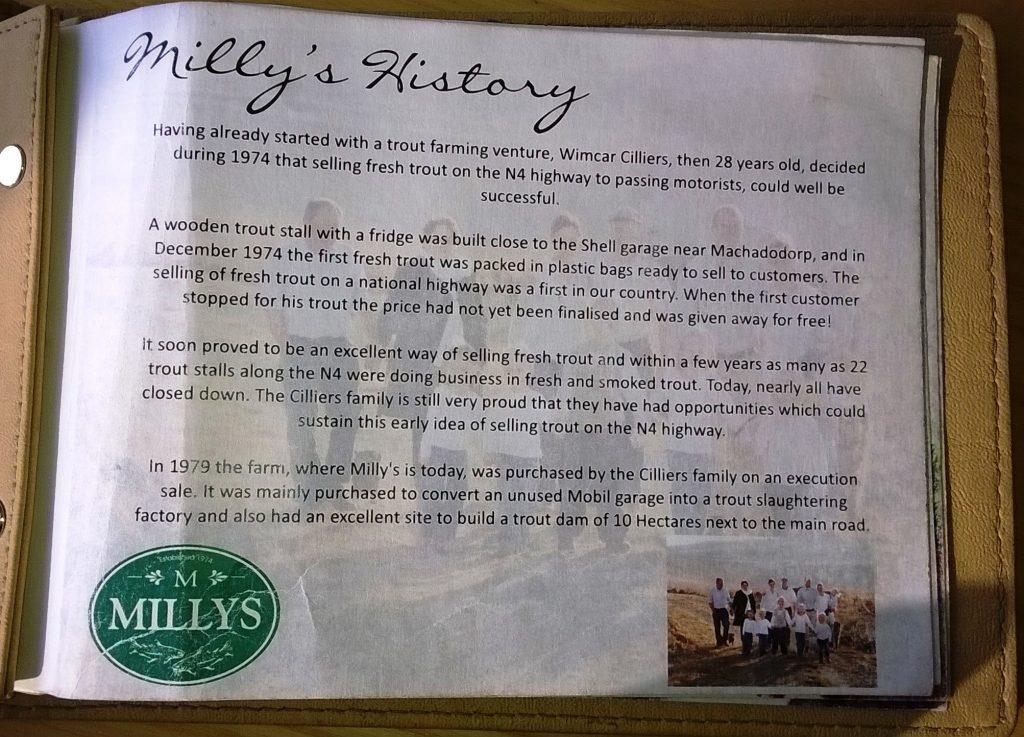 Millys history machado N4