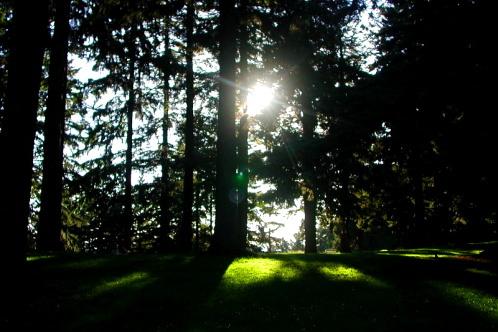Mt._tabor_park-trazzler