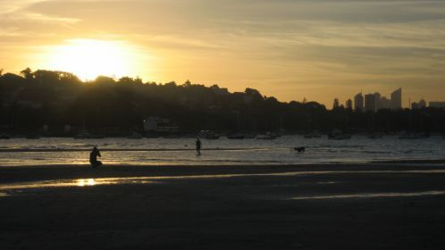 Rose_bay_sunset