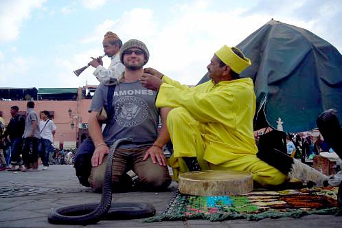 Trazzler_marrakech_snake