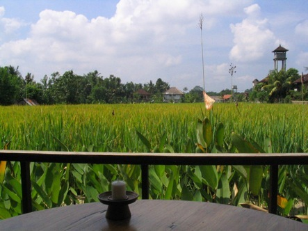 Komeneka_resort__ubud__bali