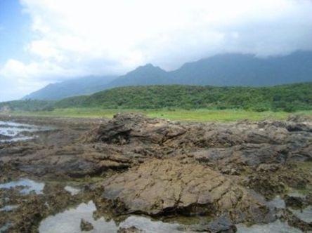 Yakushima1