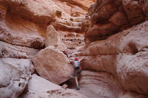 Lower_cathedral_wash_glen_canyon_national_recreation_area_498x332